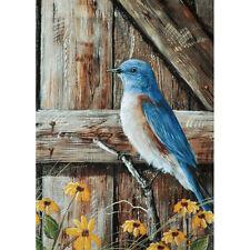 "Bluebird Song Garden Flag 12.5"" X 18"" Seasonal 11-2787-218 Summer Rain"