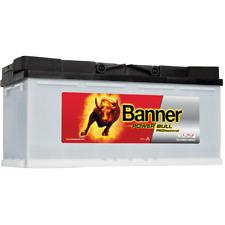 Banner Power Bull PROfessional P10040 100Ah 12V Autobatterie
