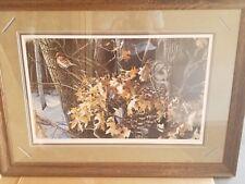 Winter Oaks Barred Owl ~ Ron Van Gilder ~ Art Print