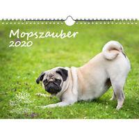 Mopszauber DIN A4 Kalender 2020 Mops Hunde und Welpen - Seelenzauber