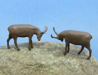 kämpfende Steinböcke Tier Figuren  Spur N (1:160)
