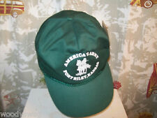 Americas Army Fort Riley Kansas Greens Ball Cap Hat Trucker Snap back One size