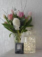 Trendy Decorative Home Warm LED White Lights Bottle Jar Battery Power