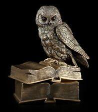 Coffret - Chouette Assis sur livres - FIGURINE OISEAU STATUETTE VERONESE