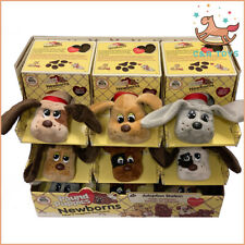Pound Puppies Newborn Puppies Wave 2 Classic Collection 80's Adopt A Huggable Fr