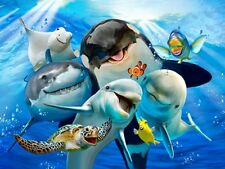 ANIMAL SELFIE PHOTO OCEAN SEA SHARK TURTLE DOLPHIN WHALE METAL PLAQUE SIGN 1216