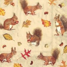 4 x Single Paper Napkins/3 Ply/Decoupage/Craft/Assorted Squirrels