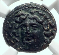 LARISSA in THESSALy 325BC Authentic Ancient Greek Coin NYMPH & HORSE NGC i78532