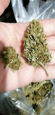Marijuana Legale - THC 0,5% - CBD 42% -10gr - Super SKUNK DRAGON