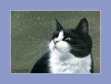 Tuxedo Cat Print Who Is Calling from an original by I Garmashova