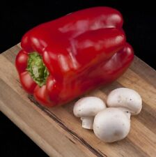 25 BIG RED SWEET BELL PEPPER 2021 (all non-gmo heirloom vegetable seeds!)