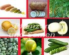 🔥 Gurke Gurken * historische Sorten * SEHR SELTEN * Salatgurken * alte Sorten