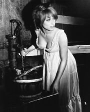 THE FEARLESS VAMPIRE KILLERS SHARON TATE 11X14 PHOTO