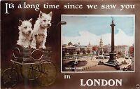 POSTCARD    LONDON   Greetings  Trafalgar  Square...