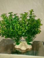 Plantas de plastico para decoración acuarios, terrarios 10 cms aprox.