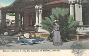 Honolulu, HAWAII ~ Princess Kaiulani feeding the Peacocks at Ainahau - Vintage