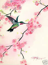 "Humming Bird ""CHERRY BLOSSOMS"" Watercolor 8 x 10 ART Print Signed by Artist DJR"
