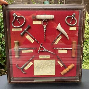 Antique Rare Selection of Museum Quality Corkscrews in Display Box lot of 10
