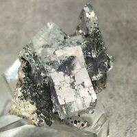 CLEAR FLUORITE CRYSTALS  WITH QUARTZ C0176