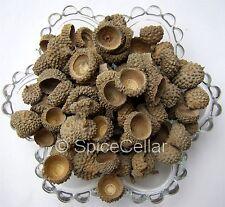 Séchés Acorn caps-décoratif-pot pourri - 100g Sac-Naturel