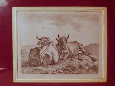 Gravure ancienne XIX 19 siecle Johan Adam Klein peintre allemand Allemagne
