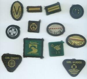 GROUP 12 DIFFERENT BROWNIE GUIDES BADGES (F)