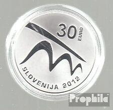 Slovenië 2012 Polierte Plate 2012 30 Euro Cultuur Maribor