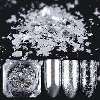 0.2g Born Pretty Silber Flakes Glimmer Glitzer Pulver Puder Nageldesign Dekor