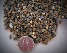 RYUUSEN (DRAGON SPRING) PREMIXED PROFESSIONAL BONSAI SOIL (MEDIUM) 20 POUNDS
