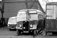Cresta Coaches, Wimbledon OPC457 AEC Regal Bus Photo Ref P306