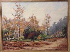 Vintage Landscape Signed R Thorndill Birch? Trees Path Impasto Wide Frame