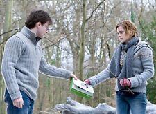 Foto Harry Potter - Daniel Radcliffe, Emma Watson (P1) Format 20x27 CM