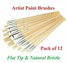 Pack Of 12 Artist Flat Paint Brushes Set Small & Large Sizes Thin & Thick