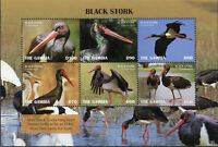 Gambia 2019 MNH Black Stork 6v M/S Storks Birds Stamps