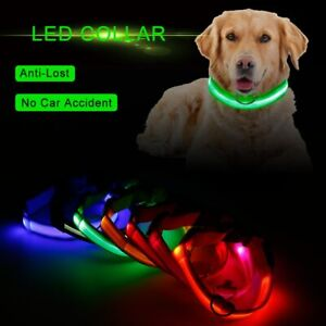 LED Light Collar USB Rechargeable Dog Pet Collar Luminous Flashing Night Safety