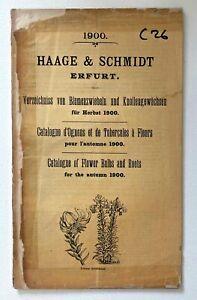 Catalogue D'Ognons Et De Tubercules De Haage & Schmidt 1900