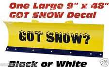 Got Snow Plow Decals ANY COLOR for your  Meyer Fisher Western Boss Snow Plows