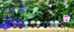 Rainbow Fluorite Crystal Mushroooms