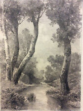 École de Barbizon paysage fusain signature illisible XIXème .