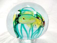 """Rare / seltenes  Cenedese Murano  glass  Glas """" Aquarium """" paperweight  10 cm"""