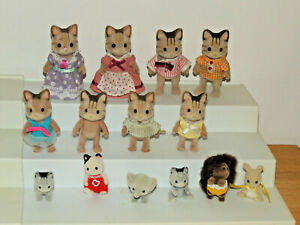 Calico critters lot (14 Figures) Kitty Cats, Hedgehog Family Baby