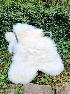 XXXL Huge 140cm by 80cm Genuine Fluffy British Cream Sheepskin Rug A+++