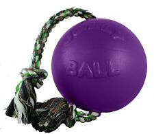 Jolly Pets Romp-n-Roll 6 inch Purple | Rubber Ball with Rope for Dogs
