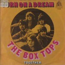 "7"" Single - Box Tops, The - Turn On A Dream / Together - S76 - washed & cleaned"