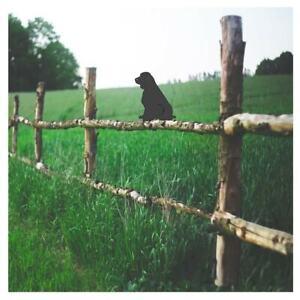 Springer Spaniel Sitting Fence Topper