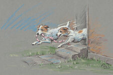 Jack Russell Terrier fine art dog print by Paul Doyle. Sausage Dogs