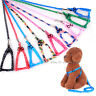 Pet Dog Adjustable Strap Harness Small Teddy Dogs Traction Training Leashes Lead