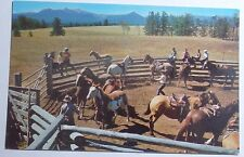1960'S POSTCARD RIDING TIME AT BEAVER LAKE CAMP 3 BAR RANCH CLINTON BC CANADA