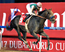 "Arrogate 2017 Dubai World Cup 8"" x 10"" Photo Signed Mike Smith"