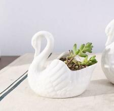 White Swan Ceramics Candle Bonsai Holder Pot Home Table Ornament Statue Gift
